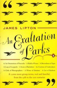 exaltation of larks james lipton