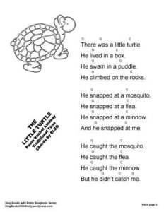 SBWE SBS Little Turtle w chords