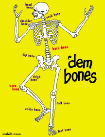 Image result for the hip bone's connected to the knee bone song