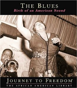 blues birth of an american sound