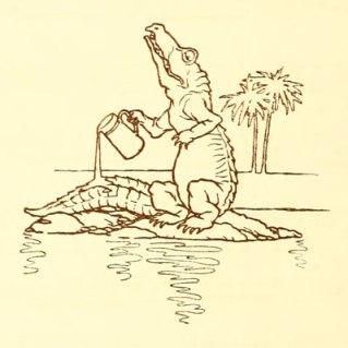 little crocodile folkard