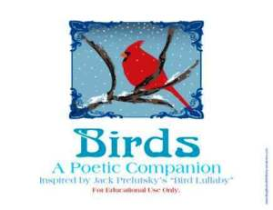bird lullaby 4 sbwe cover only