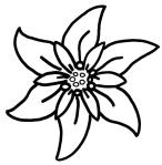 edelweiss trace by eleg 4 sbwe - Copy - Copy