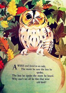 wise old owl johnstone
