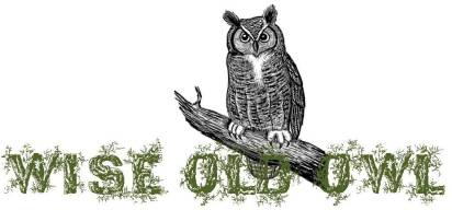wise old owl sbwe banner