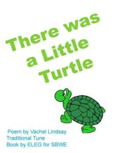 LITTLE TURTLE for SBWE cover only