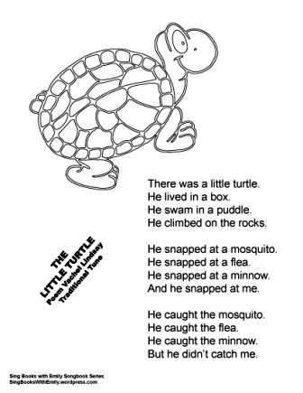 The Little Turtle A Singable Illustrated Poem Sing