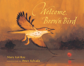 welcome brown bird (Ray, Sylada)
