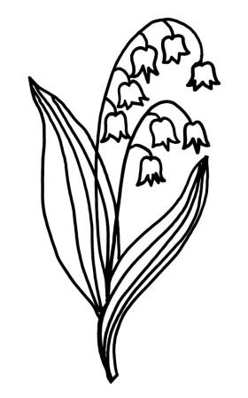 White Coral Bells ELEG trace fixed - Copy